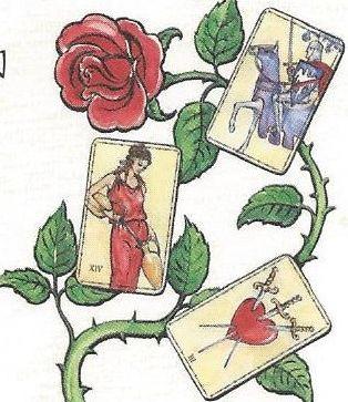 Carte de choix d'un amour extravagant